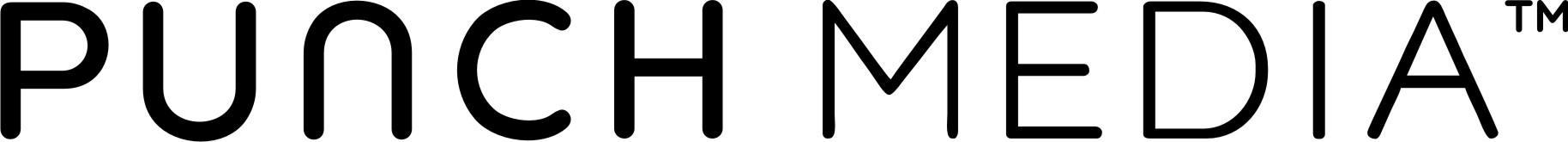Punch Media